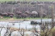 تصاویر | سد قشلاق سنندج هم سرریز شد