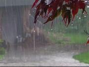 بارش ۱۱۶۱ میلیمتر باران در یاسوج