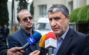 Minister: Iran, Ukraine to jointly examine crashed plane's black box
