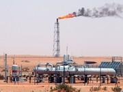 چرا پرونده صادرات گاز ایران به عمان ۱۵ سال است خاک میخورد؟