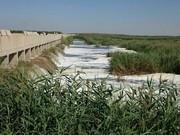ایجاد۵۰ دریچه برای گردش آب در هورالعظیم