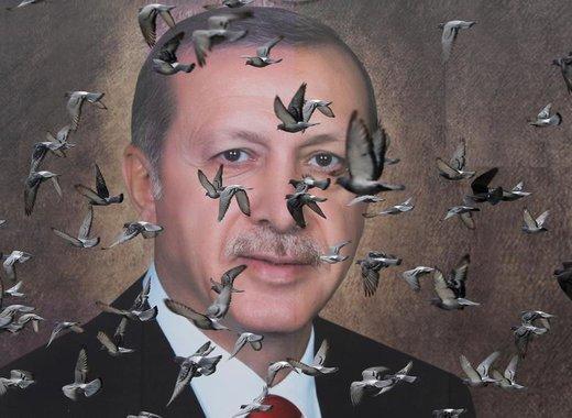 کبوتر ها در مقابل پوستر بزرگ اردوغان، رئیسجمهور ترکیه، در بورسا پرواز میکنند