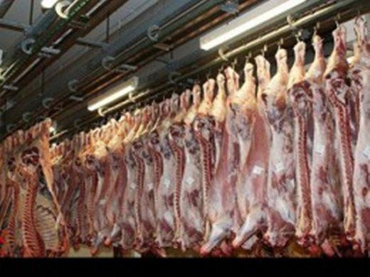 فروش گوشت قرمز دولتی آغاز میشود