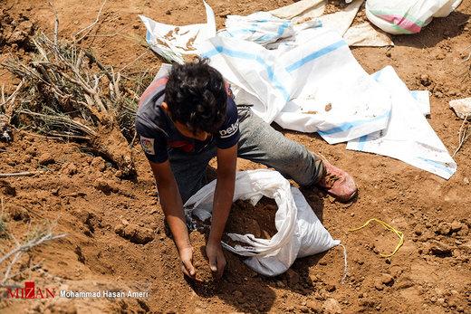 ساخت سیل بند در ملاشیه اهواز