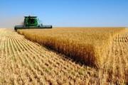 مدیر بانک کشاورزی: ۱۹ هزار میلیارد ریال وام به کشاورزان آذربایجان شرقی پرداخت شد