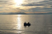 حجم آب دریاچه ارومیه از مرز ۵ میلیارد متر مکعب عبور کرد/ آمار