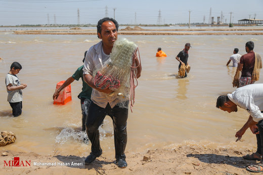 صید ماهی در سیلاب خوزستان