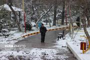 تصاویر | چهره زمستانی بهار در اردبیل