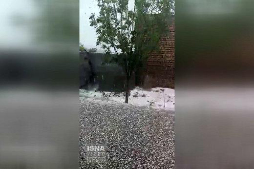 فیلم | تگرگ شدید ساعتی پیش در روستای جغتای سبزوار