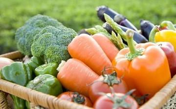 درباره گیاهخواری چه میدانید؟/ نکاتی که بهتر است بدانید