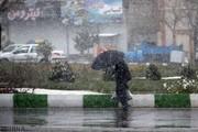 تصاویر |  جولان برف و سرما در بهار