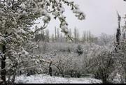 تصاویر | اردیبهشتی برفی ارومیه