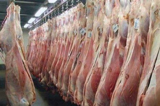 مدیرکل پشتیبانی امور دام آذربایجان شرقی: توزیع گوشت قرمز ادامه دارد