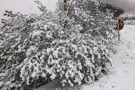 بارش اولین برف پاییزی در آذربایجانغربی / همه راههای استان باز است