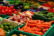 صادرات ۲۹۰ میلیون دلاری محصولات کشاورزی در سال ۱۳۹۷