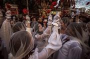 عکس   عروسهای سیسیلی در عکس روز نشنال جئوگرافیک