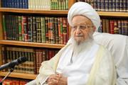 توصیه فرهنگی که آیتالله مکارمشیرازی به سفیر افغانستان گوشزد کرد