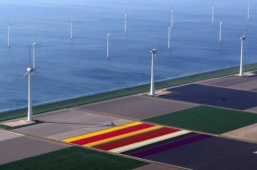 عکس هوایی از مزارع گل لاله در نزدیکی شهر کریل هلند