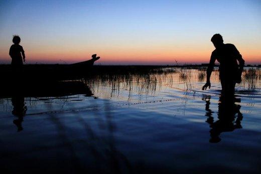 یک مرد عراقی در مردابی در استان ذیقار این کشور ماهیگیری میکند