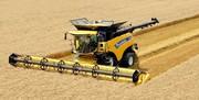 سهم ۵۰ درصدی کشاورزی در تامین معیشت مردم ایلام