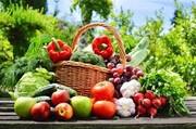 هر محصول بدون سم و کود، ارگانیک نیست