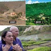 روایتی ساده از یک معجزه؛ کاشت ۲ میلیون درخت، در ۲۰ سال