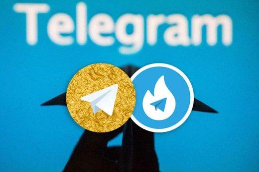 فیروزآبادی: در رابطه با حمایت از هاتگرام و تلگرامطلایی اطلاعی ندارم/
