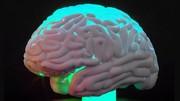 کشف نوع جدیدی از بیماری که شبیه آلزایمر است