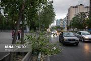 تصاویر| بلایی که طوفان جمعه سر تهران آورد