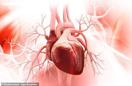 انقلاب در درمان بیماریهای قلبی با تزریق ژن ماهیچهساز