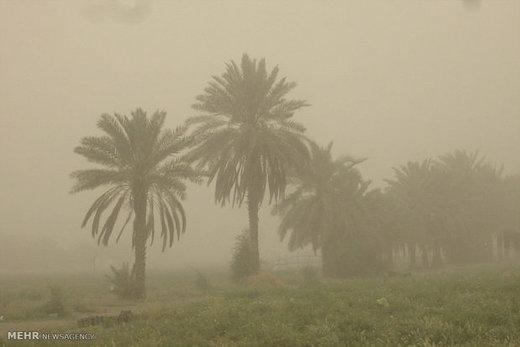 اهواز در خاک/ گرد و غبار رامشیر، ۱۶ برابر حد مجاز