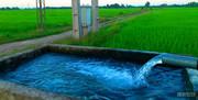 جابجایی زمان اوج بار برای مشترکین برق کشاورزی وصنعتی درچهارمحال وبختیاری