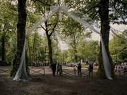تصاویر | جشن نمادین ازدواج ۲ درخت تاریخی در ایتالیا