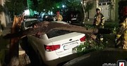 تصاویر   سقوط درخت روی سراتو در اشرفیاصفهانی