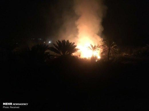 آتشسوزی در نخلستان های سیاهو