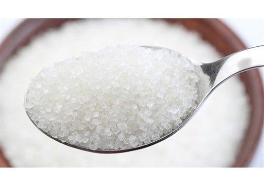 نوده فراهانی: احتکار شکر ممکن نیست/ قیمت شکر کیلویی۳۴۰۰ تومان است