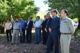 اراضی تالاب بیشه دالان بروجرد به محیط زیست واگذار میشود