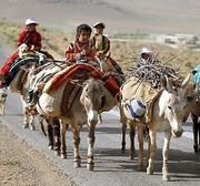 ۲ درصد جمعیت آذربایجان شرقی عشایرند