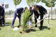 تصاویر | شروع کار ویلموتس در ایران با درختکاری