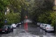 هشدار سازمان هواشناسی: احتمال سیلابی شدن ناگهانی مسیلها در ۲ روز آینده