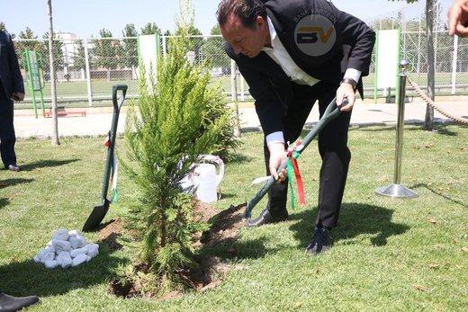 درختکاری ویلموتس در کمپ تیم ملی/ عکس