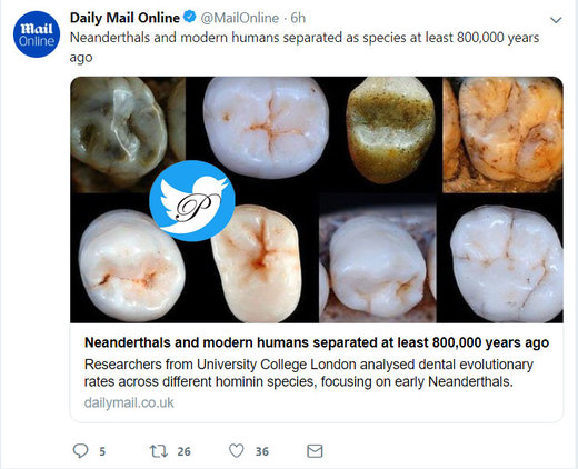 دندان انسان مدرن با انسان نئاندرتال ۸۰۰ هزار سال پیش متفاوت بوده است