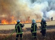 آتشبازی صاعقه در مزرعه ۲۵ هکتاری