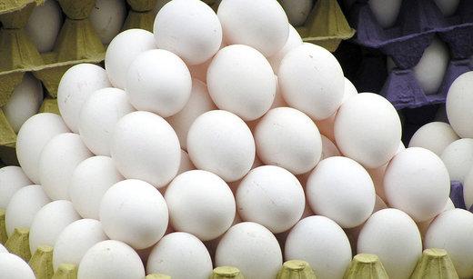 نرخ تخممرغ به کیلویی ۴۲۰۰ تومان رسید