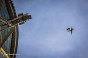 تصاویر | چتربازان نیروهای مسلح از برج میلاد پریدند