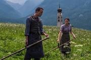 فیلم کارگردان سرشناس منتقدان جشنواره کن را دو دسته کرد