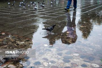 پیشبینی هواشناسی: بارندگی در ۱۴ استان کشور