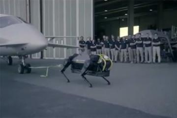 فیلم | سگ ربات ۱۲۷ کیلویی، هواپیمای ۳ تنی را کشید
