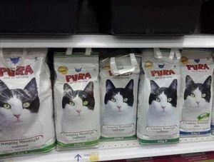 واردات غذای سگ و گربه