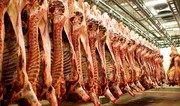 قیمت گوشت در بازار بالا رفت/ خریداران گوشت قرمز کم شدند